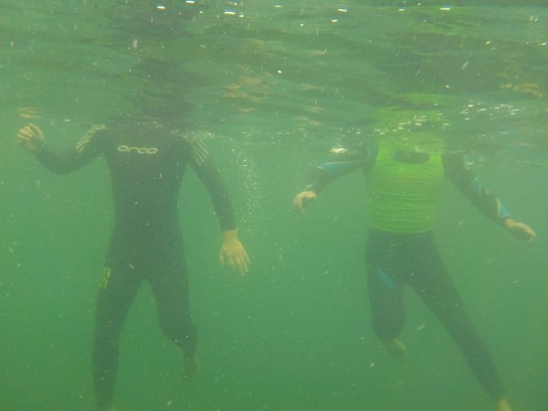 Tips to Get Yourself into Open Water Swimming